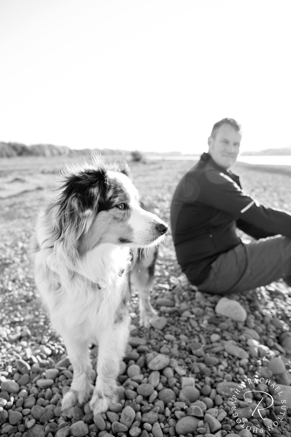 pet photo, Dog and owner sitting on the stones at Wairau river in Marlborough, New Zealand