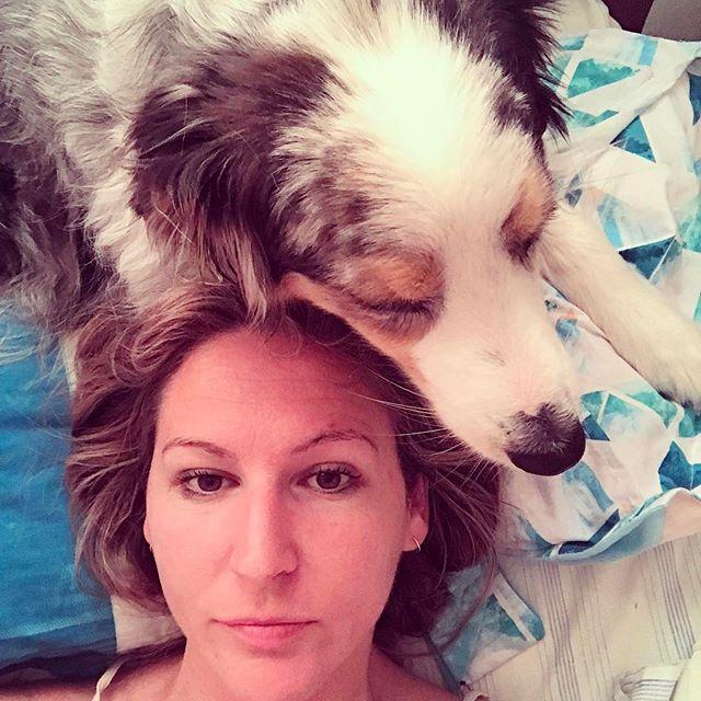 Rainy Sunday mornings are made for snuggles and sneakily hogging the pillow..🌧🙈 #whatpersonalspace #snugglesarethebest • • • • #dogsarefamily #happydog #petlifenz #dogsofnz #whatsupdognz #aussiesofinstagram #aussielove #lovethisdog #dogsofinstagram #dogscorner #instadog #meandmydog #lifewithdogs #australianshepherd #petphoto #bluemerleaussie  #nzdogs #morningcuddles #sundaymornings