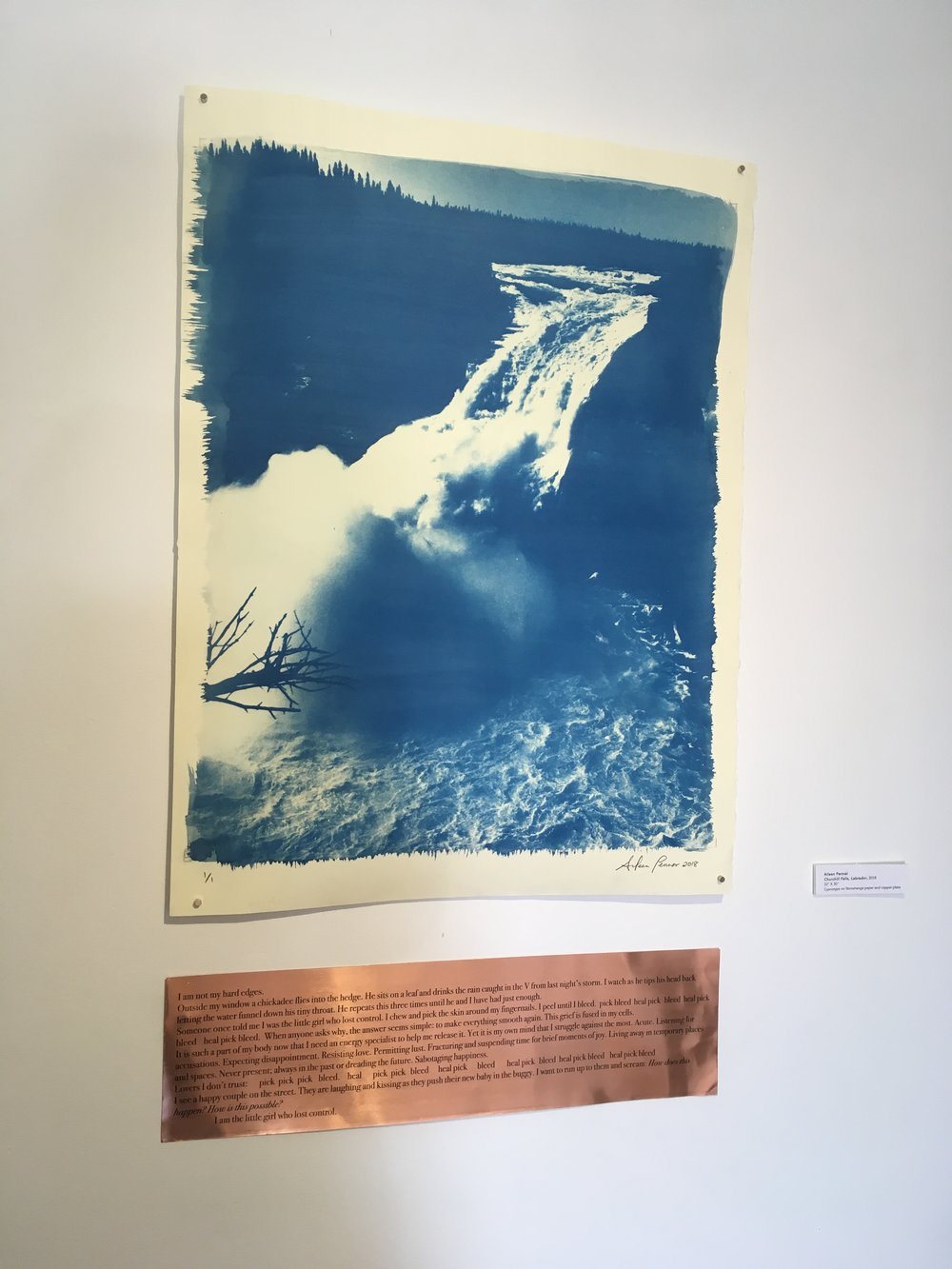 "Aileen Penner  Churchill Falls, Labrador,   2018 22"" X 30"" Cyanotype on Stonehenge paper and copper plate"