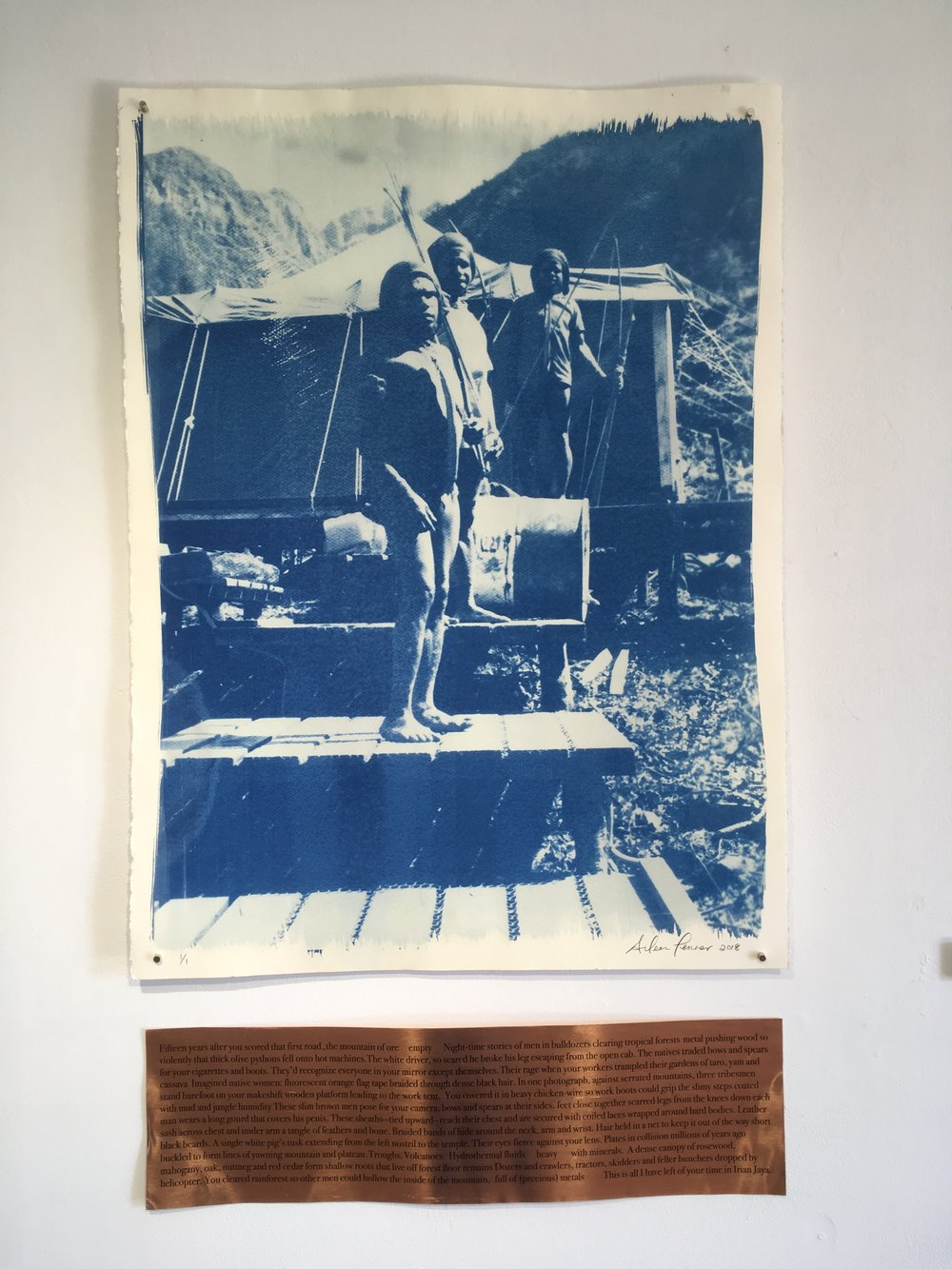 "Aileen Penner  Papua New Guinea  , 2018 22"" X 30"" Cyanotype on Stonehenge paper and copper plate"