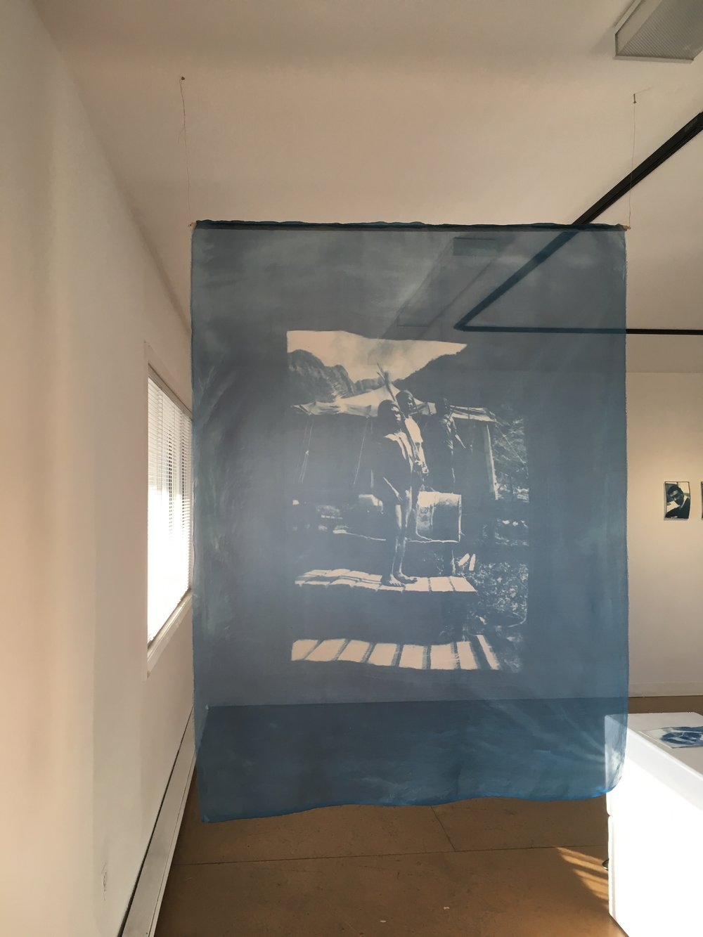 "Aileen Penner Fierce Against Your Lens , 2018 39"" X 53"" Cyanotype on silk organza with copper wire"