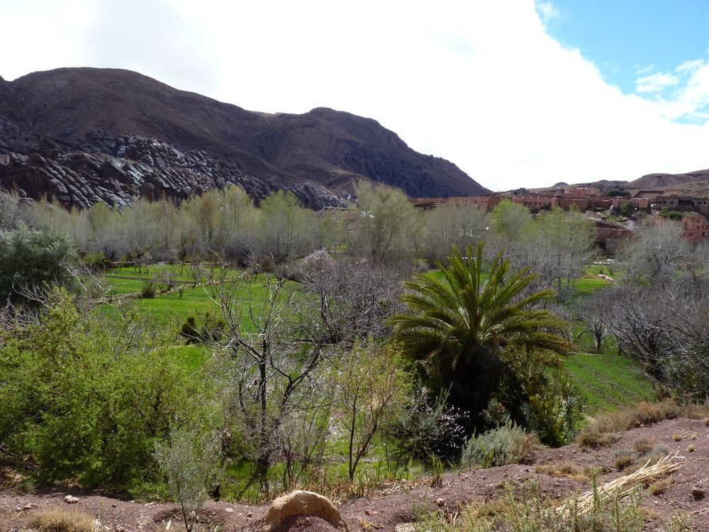 Going back to the stunning Dades Gorge, Morocco.