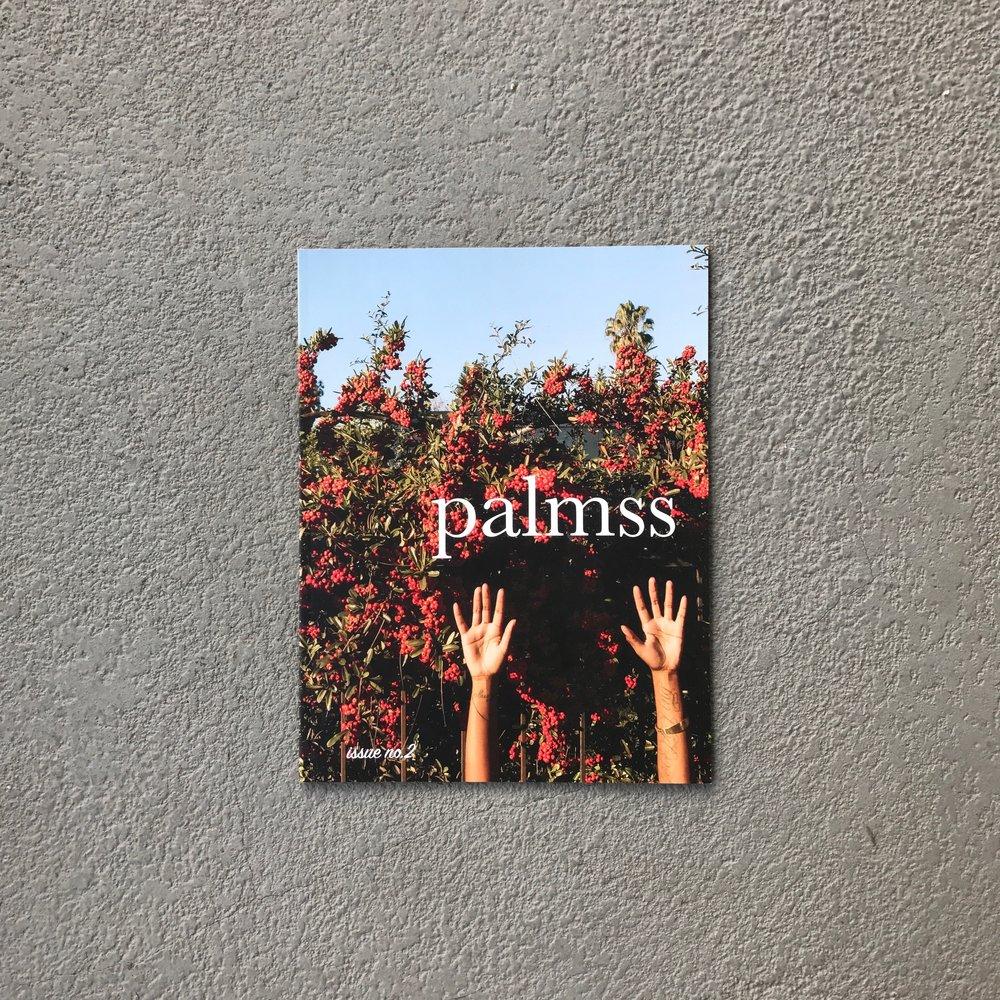 palmss2_chinweokona.jpg
