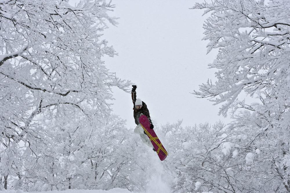 Nozawa Onsen Board.jpg