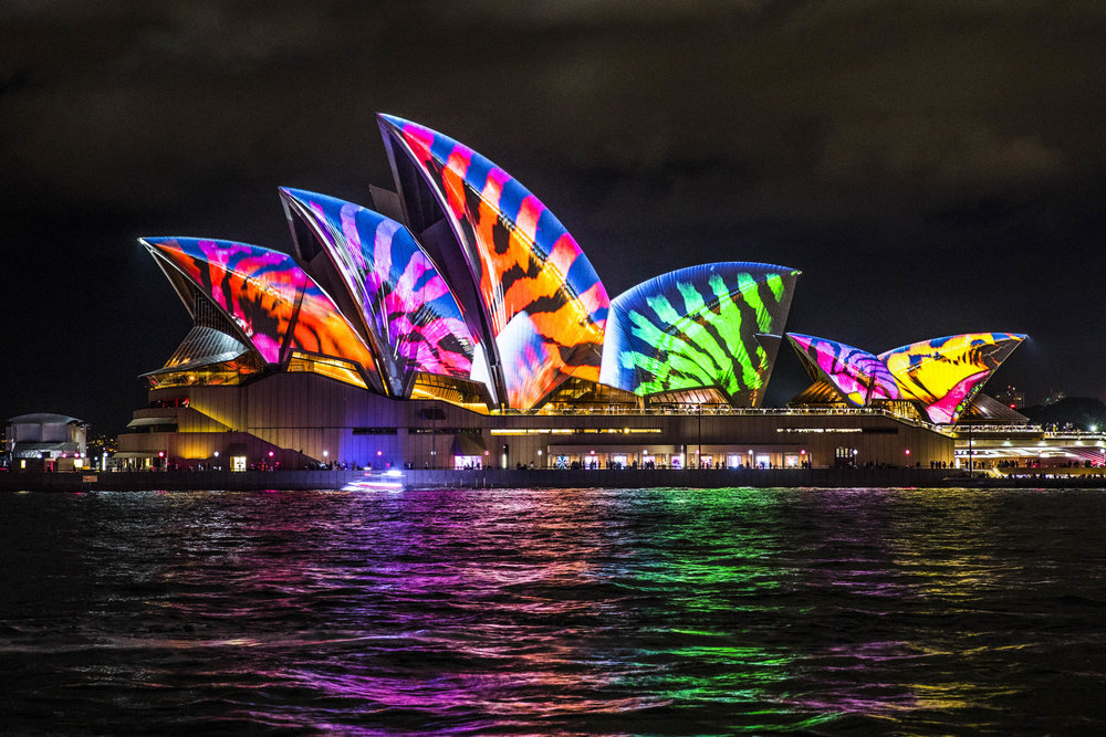 VividSydney2017_TheRocks_AudioCreatures_CREDITDestinationNSW_DK00-77.jpg