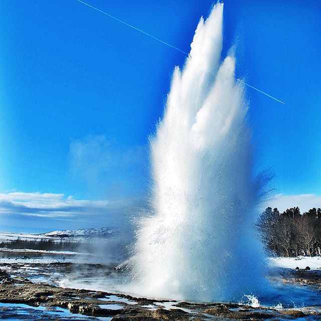 The Great Geysir, #Iceland #adventure is crazy! #nature