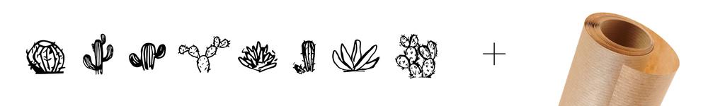 univers_cactus.jpg
