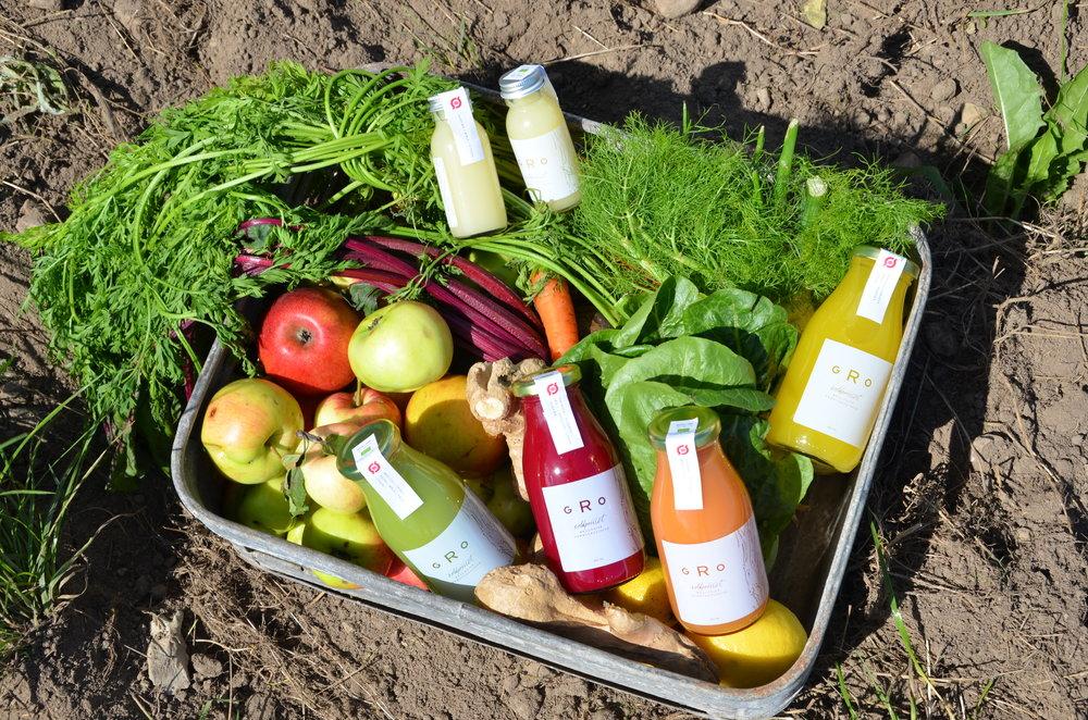 SÆSONENS JUICE - Indholdet i vores forskellige juice variere efter sæsonens frugt og grønt.Her finder du en oversigt over hvilke juice som vi har i sortimentet og som vores forhandlere har i butikkerne lige nu.