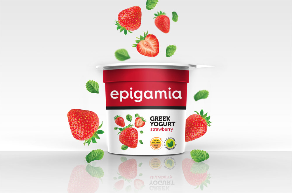 Epigamia_Packaging_Elephant Design 1.jpg