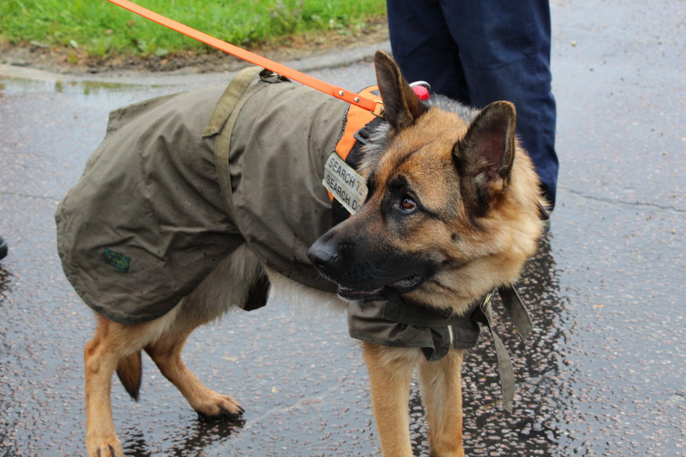 Jaffa S&R raincoat (2).JPG