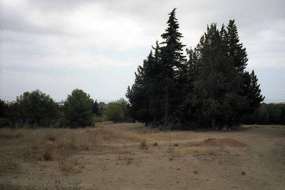Landscape001.jpg