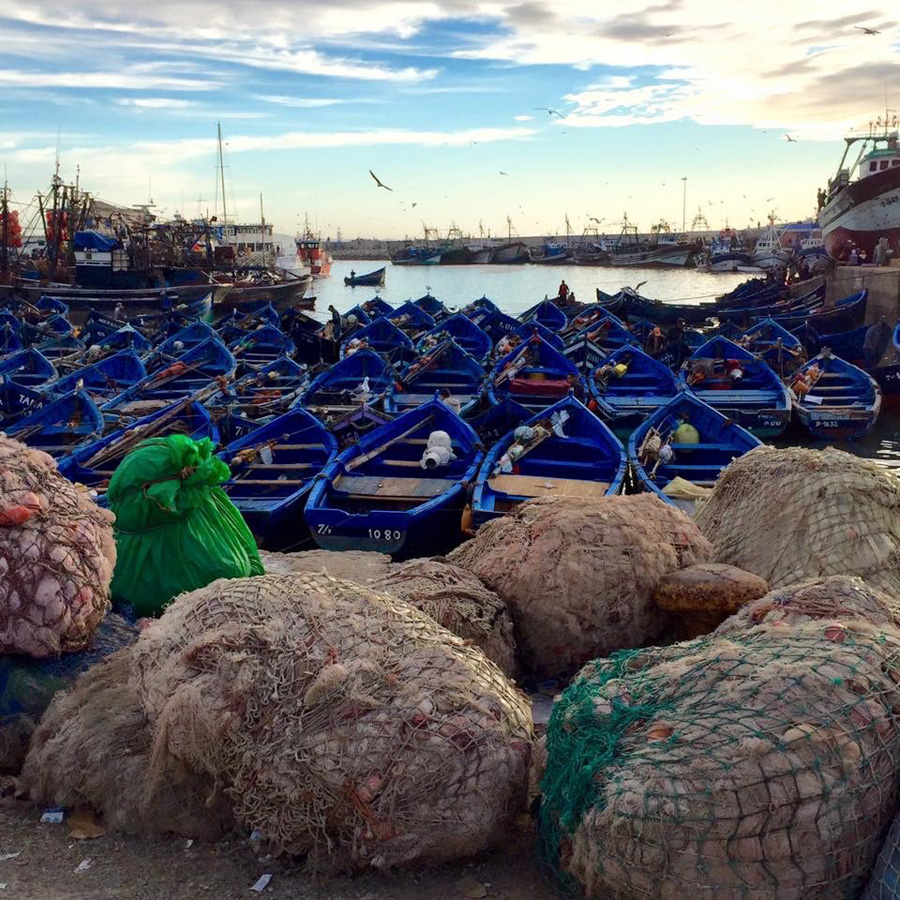 Fishing boats in Essaouira port
