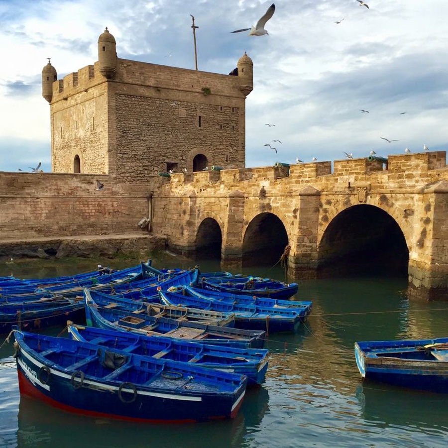 Fishing boats in Essaouira port with castle background
