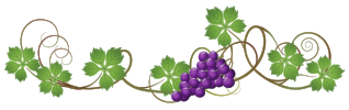 Vine decoration