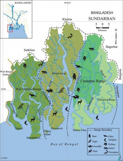 400px-Sundarbans.jpg