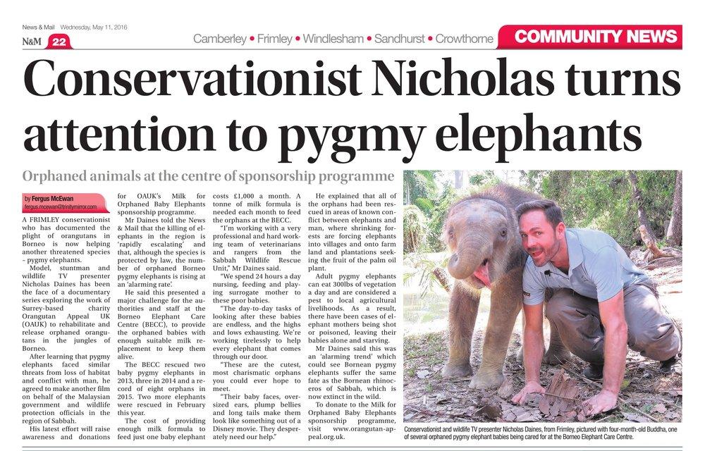 pygmyelephants-1.jpg