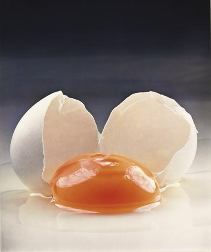 Broken Egg (1959), Irving Penn