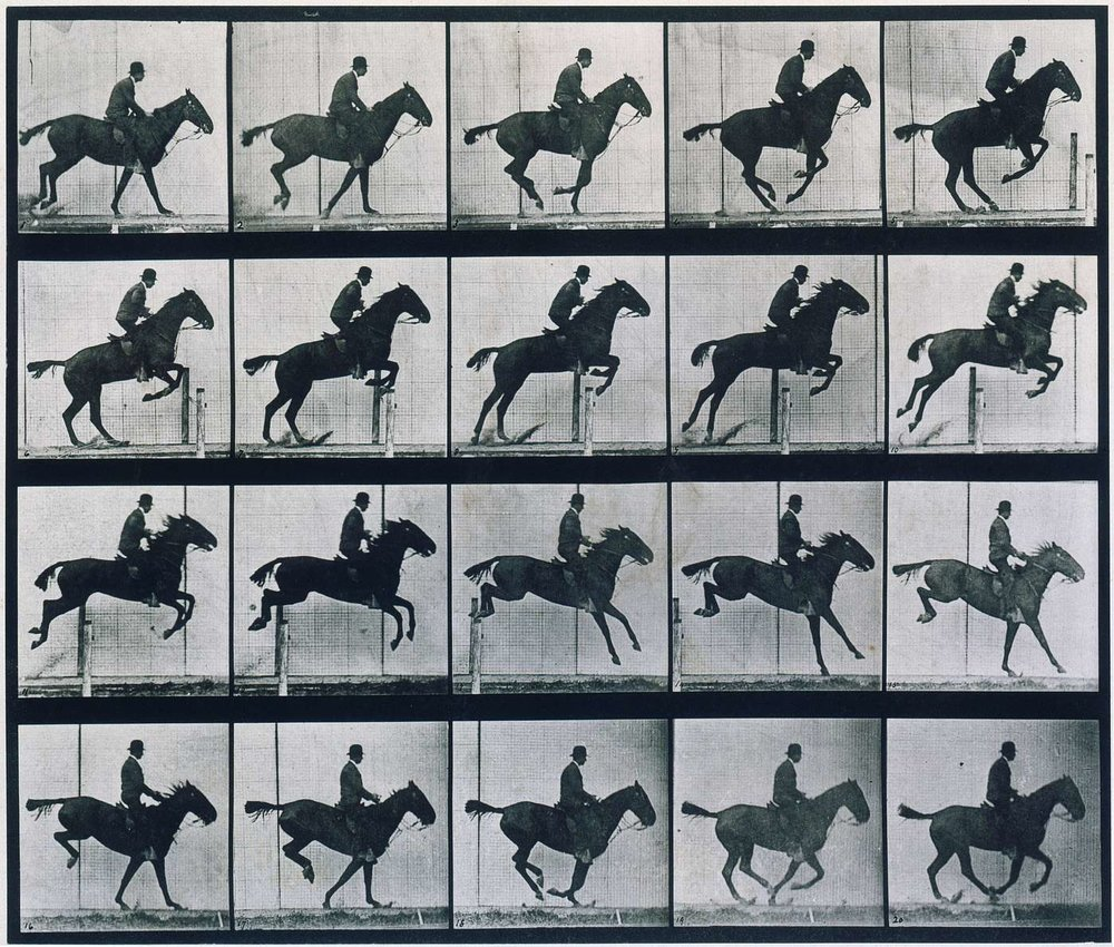 Eadweard Muybridge, Galloping Horse, 1886