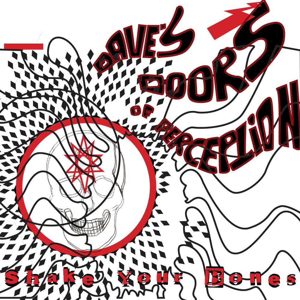 SUSS20D -Shake Your Bones Packshot.jpg