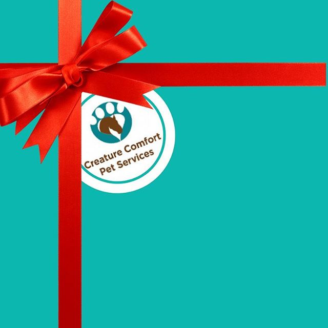 HOLIDAY GIFT ALERT! 🎁 KNOW A FRIEND THAT NEEDS HELP WITH THEIR PUPPY OR DOG? 🐶  WITH TRAINING &/OR BOARDING!  GIVE THEM A CCPS GIFT CARD! STARTING AT $25! SEND US A MESSAGE! OR CALL US AT ☎️904 588 2051 !!!