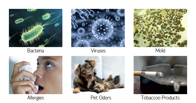 Eliminate Baceria, Viruses, Mold, Allergens, Pet Odors, Tobacco Products From Your Air With A UV Air Cleaner