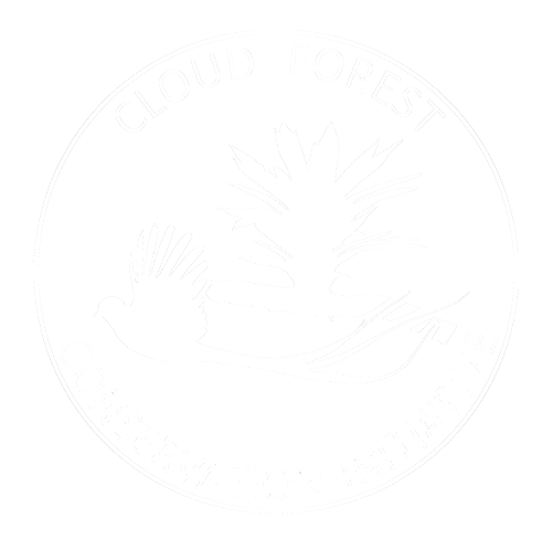 Cloud Forest Conservation Initiative