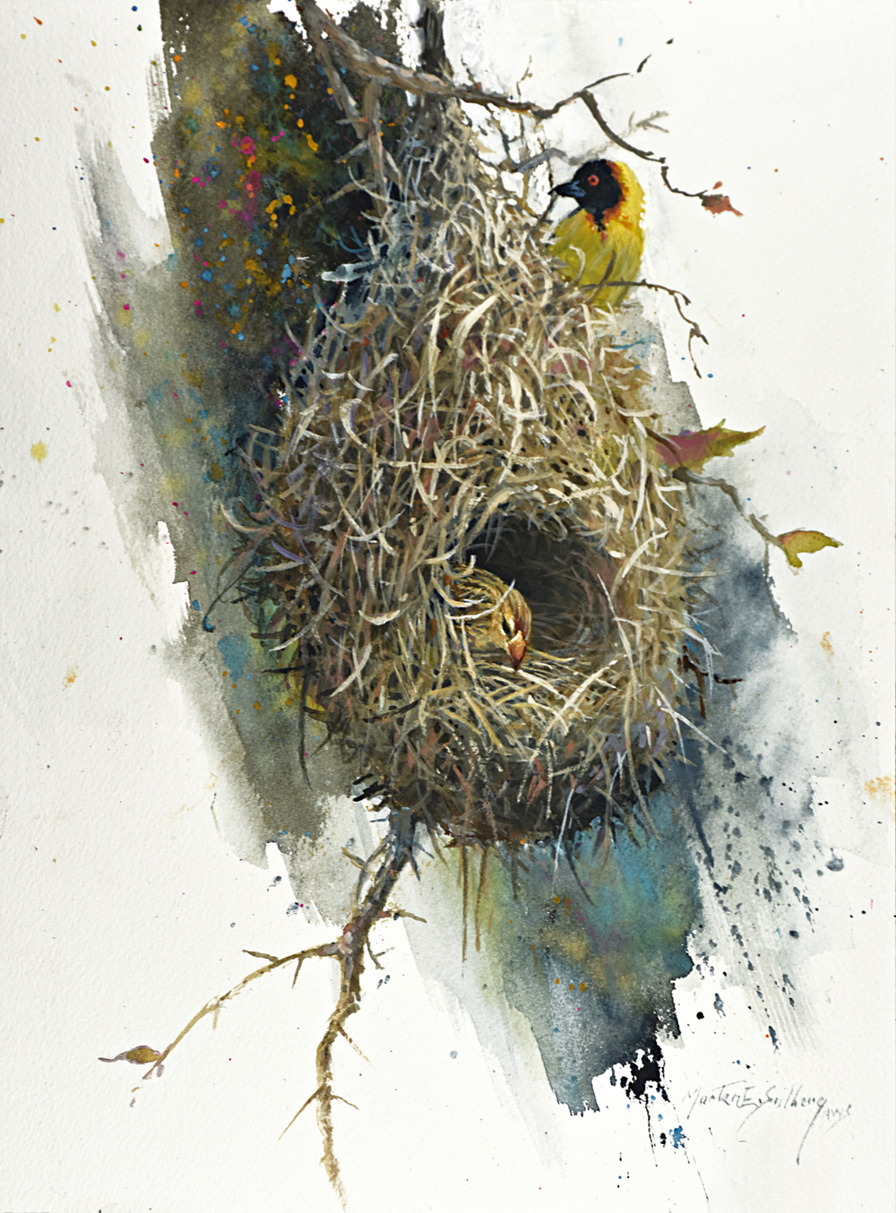 """Weaver Bird Nest"""