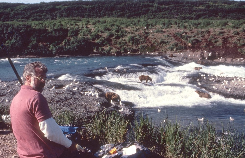 Sketching Brown Bears on the McNeil River, Alaska