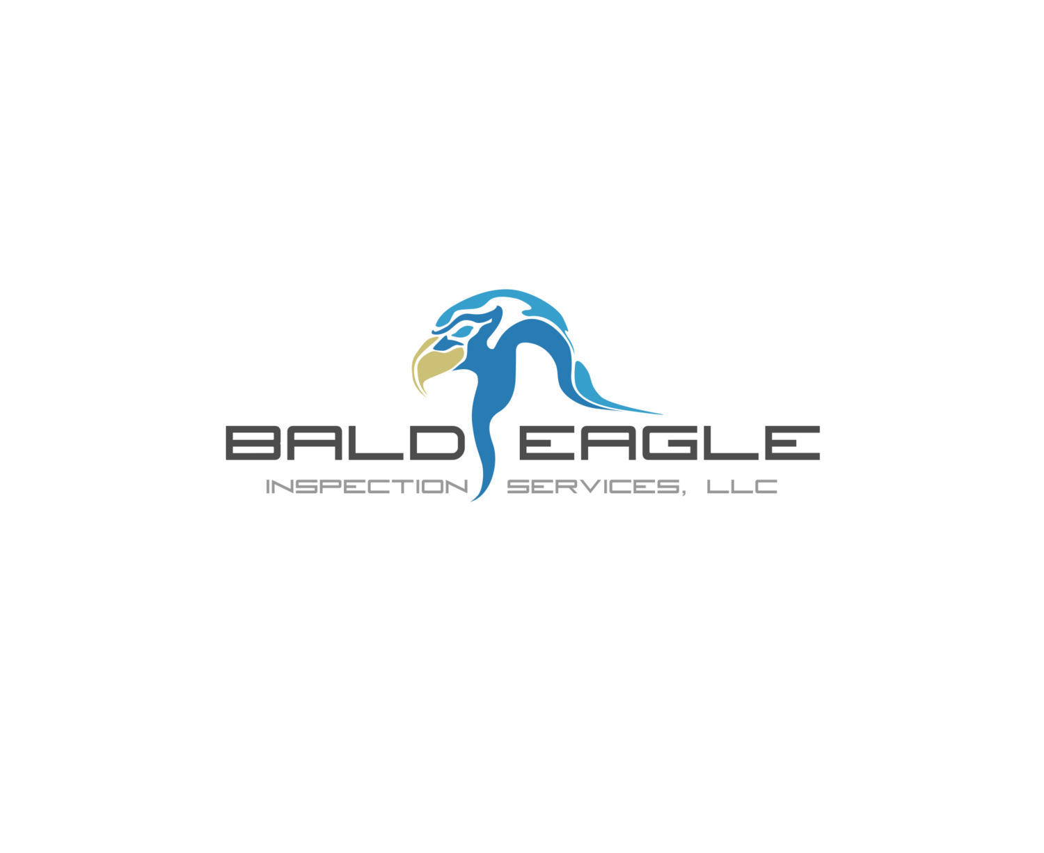 Bald Eagle Inspection Services, LLC