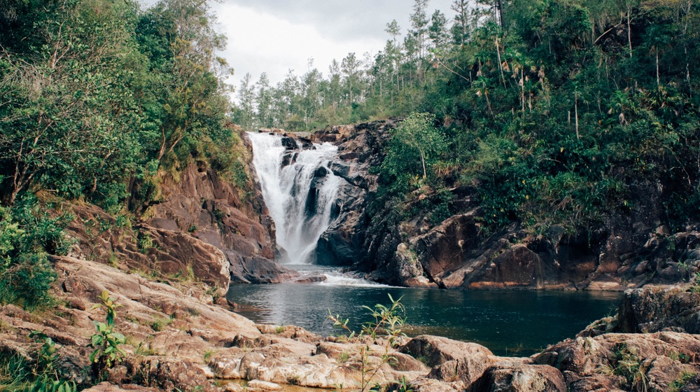 Waterfall in mountain pine ridge just 1.5 hours from heaven valley belize