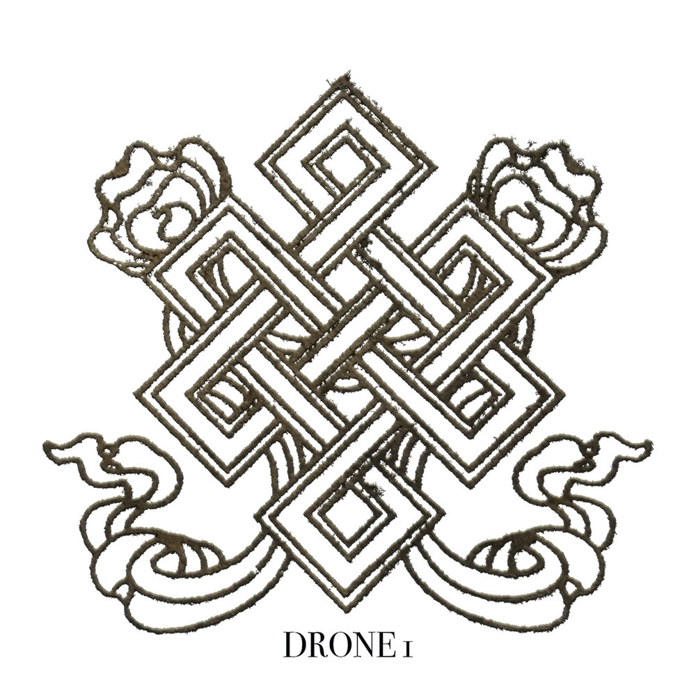Drone11080.jpg
