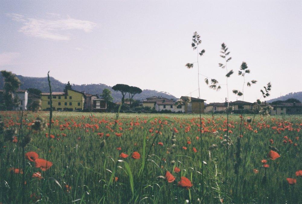 Italy, May 2018