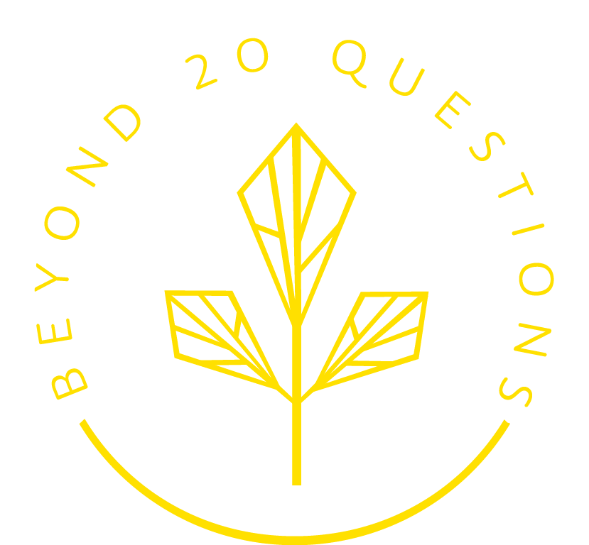 Beyond 20 Questions