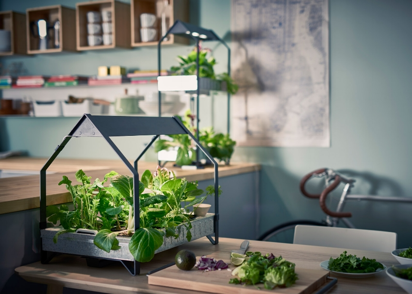 IKEA moves into indoor gardening with hydroponics