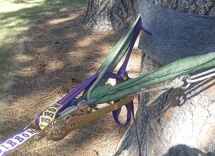 Trickline Ratchet with Webbing tied off and ratchet backed up with secondary rope/ anchor.