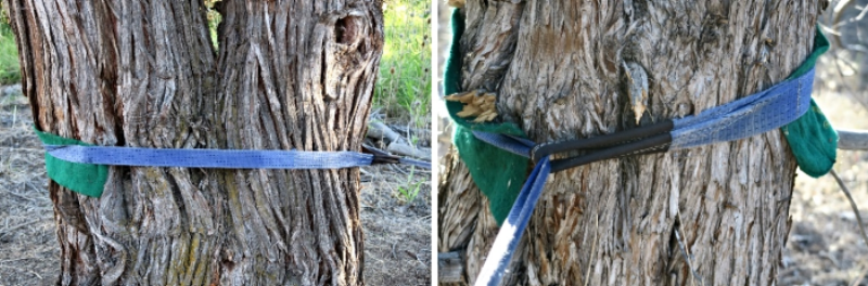 Treepro used in the WRONG place. The areas where the sling can move are not protected.
