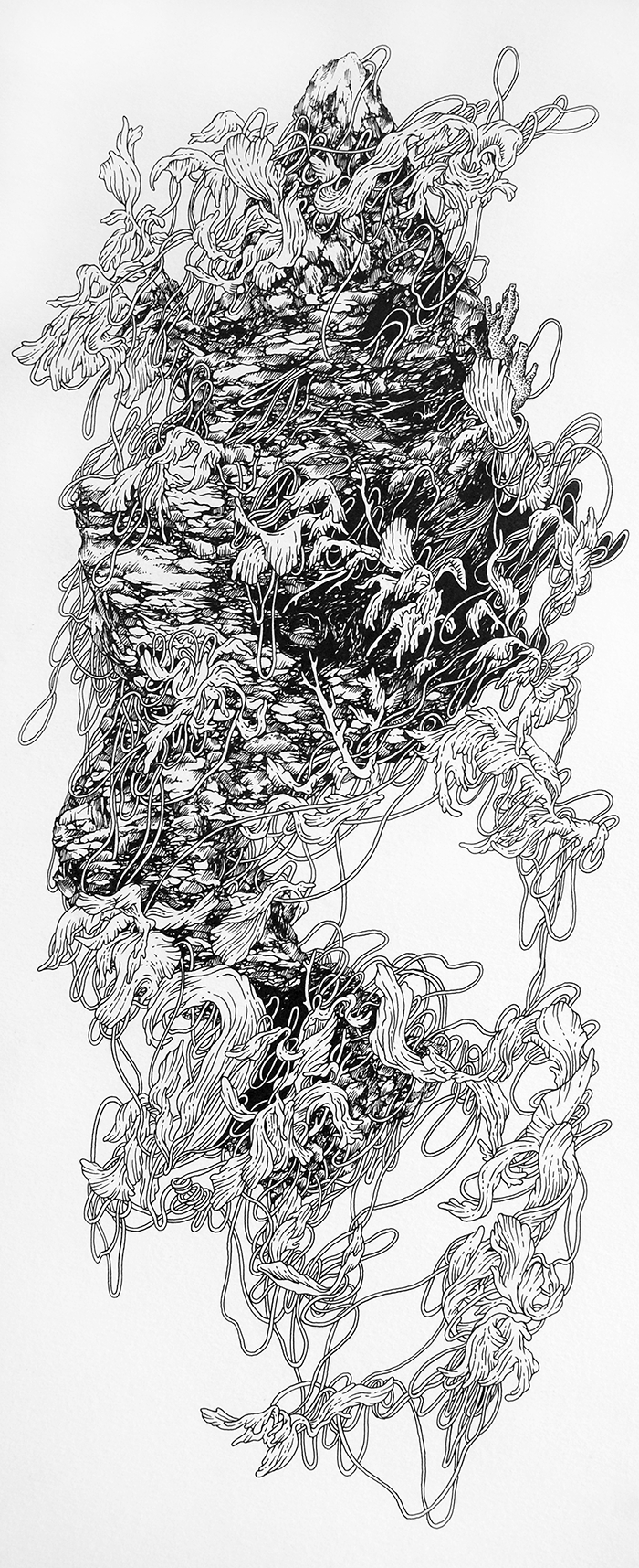 tangle  ink on paper february 2015