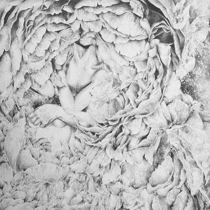 hatch  pencil on paper september 2014
