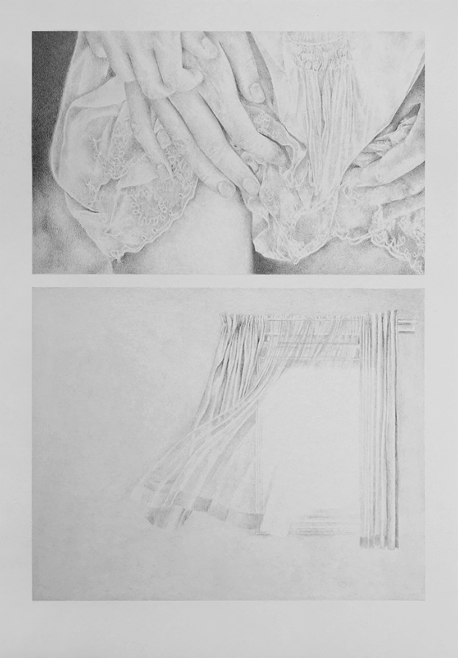 no bud or flower  pencil on paper april 2016