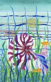 Nautilus canvas.jpeg