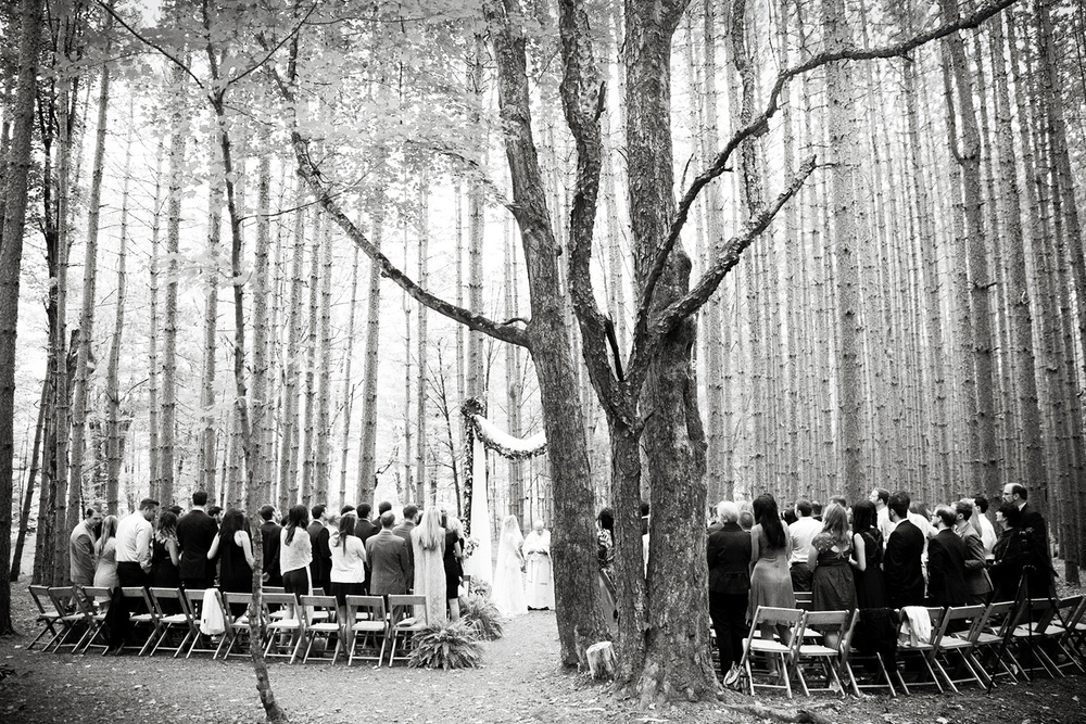 wedding_site_32.jpg