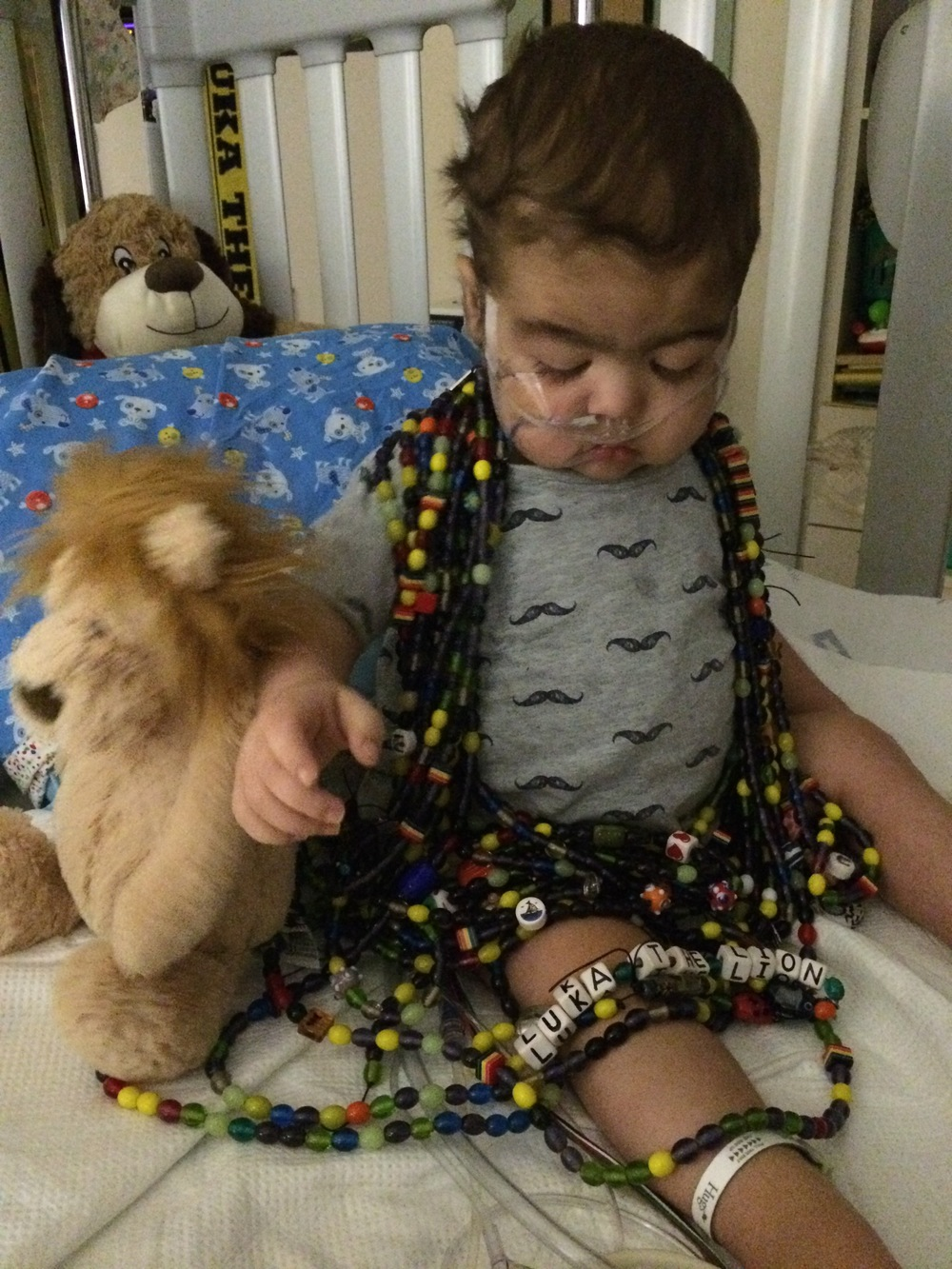 At nearly 21 months of life in November 2015, our brave Luka The Lion earned over 48 feet of beads for countless procedures and treatment due to a rare disease that is thought to be unique to him.