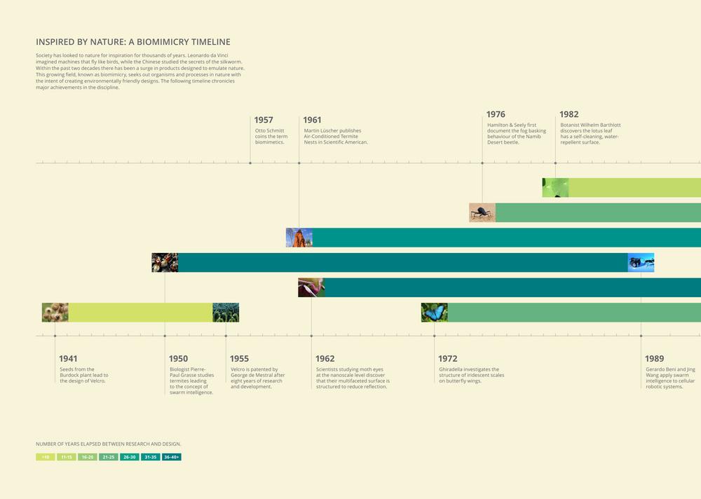 Timeline_Left