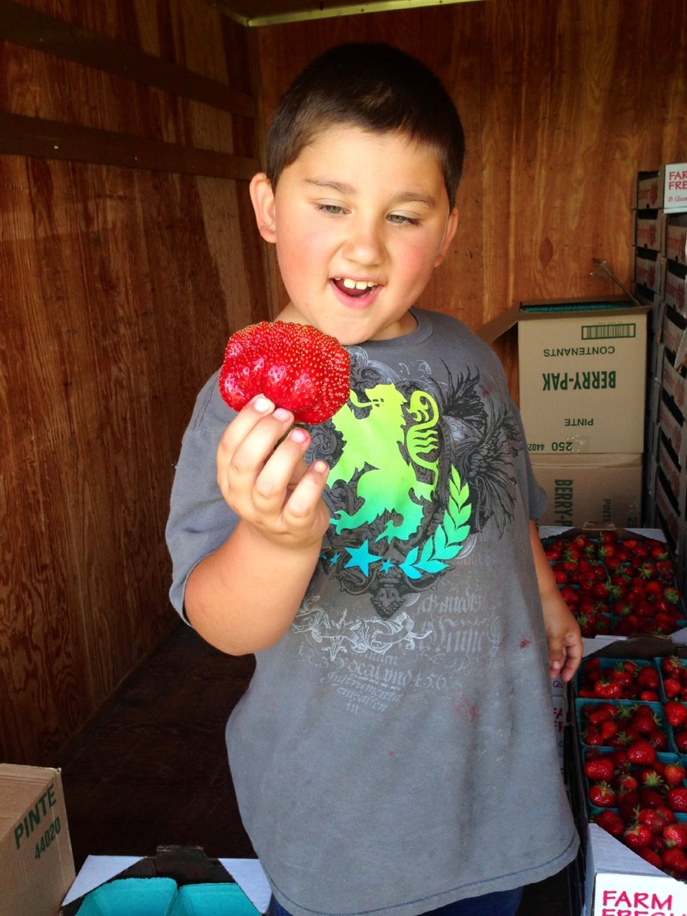 Friske Orchards strawberries