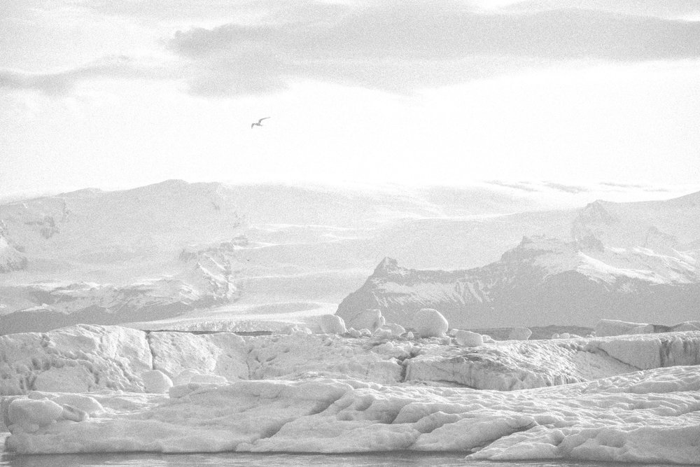 black and white glaciers.jpg