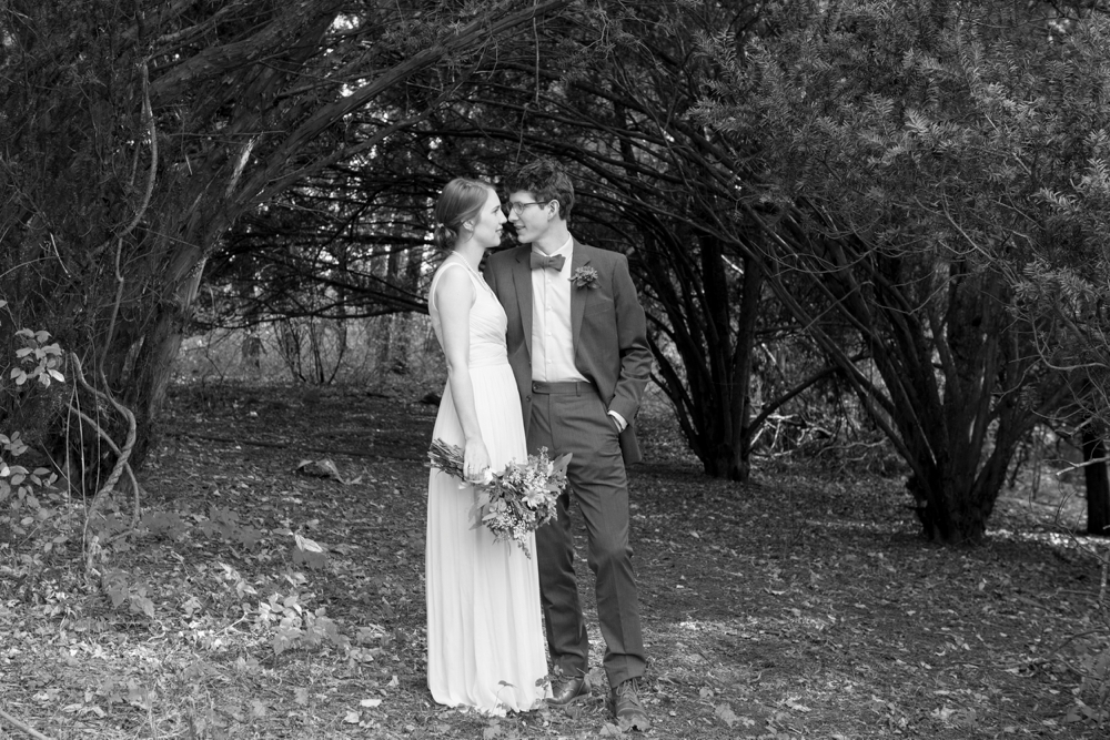 PaineEstate_Wedding_Lauren&Campbell_0033.jpg