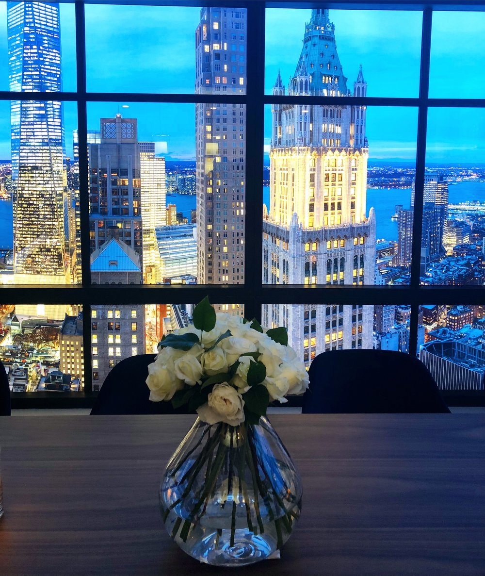 25 Park Row Views