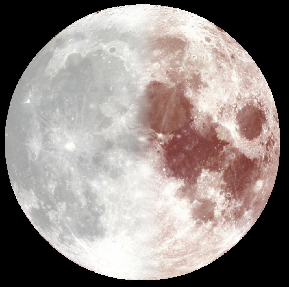 3rd qtr Moon.png