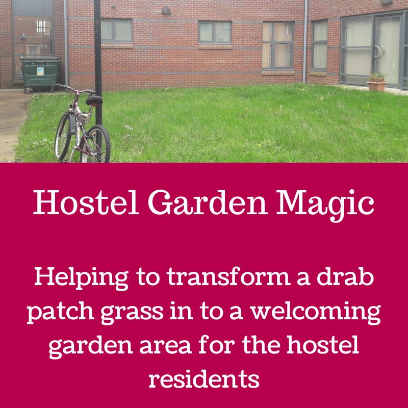 Hostel Garden Magic.png