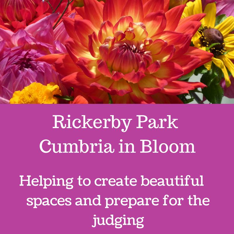 Rickerby Park CIB.png